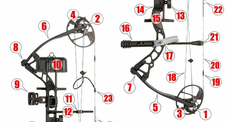 How to identify the parts of a compound bow! » targetcrazy com